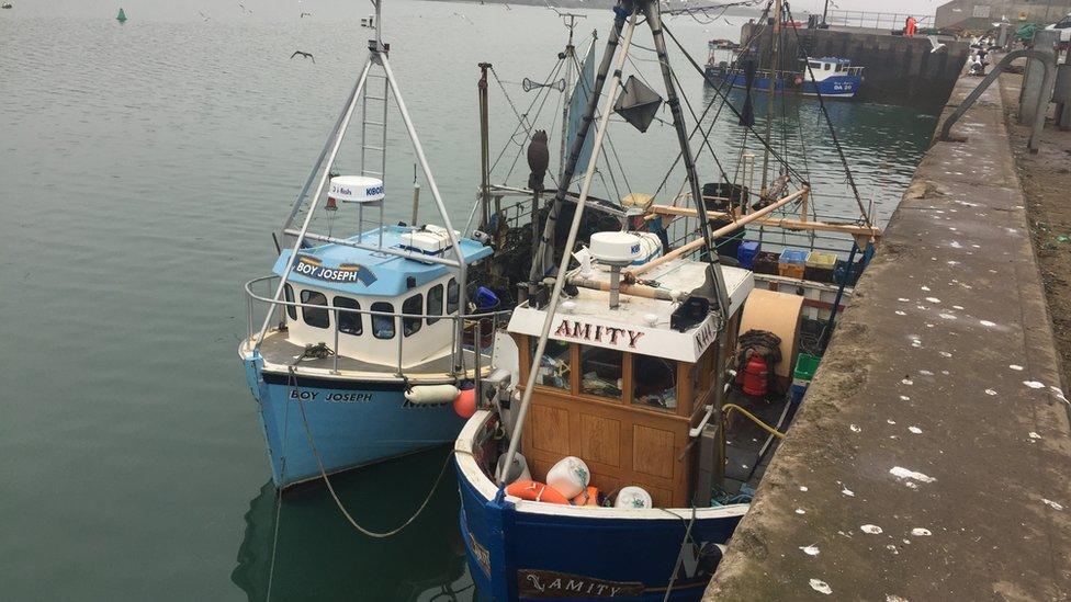 Irish government unhappy over fishing row