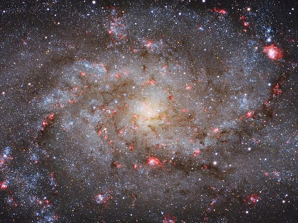 M33 Core - by Michael van Doorn (Galaxies, Winner)