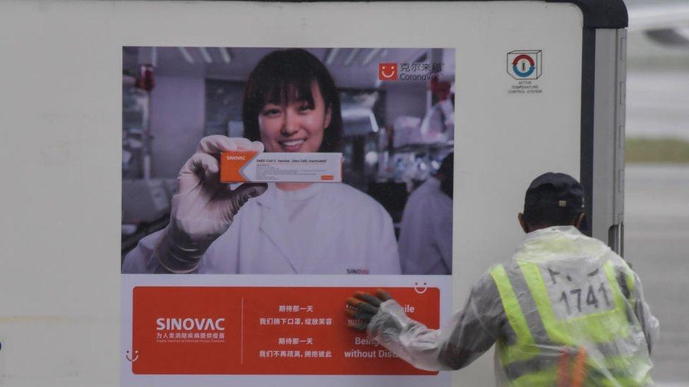 contenedor con vacuna de Sinovac en Brasil