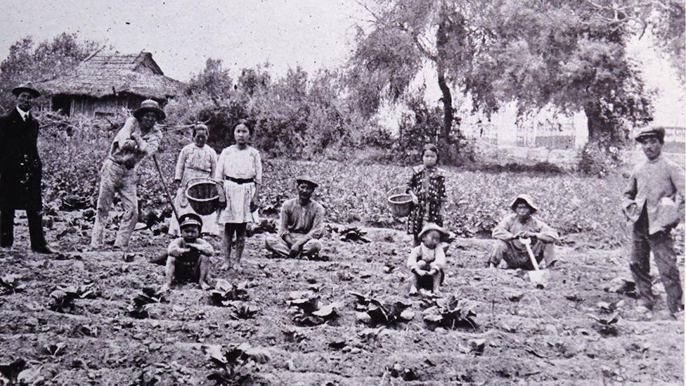 Campesinos japoneses en Perú