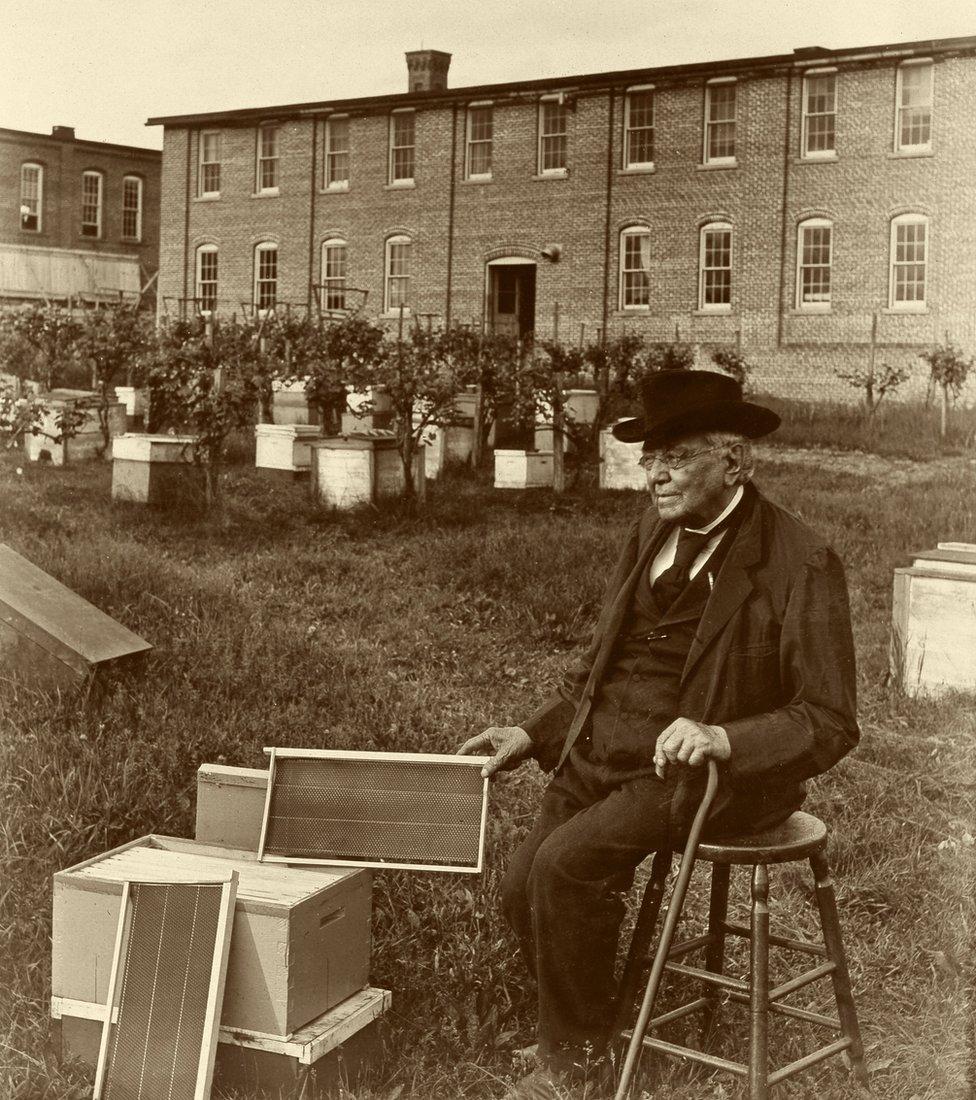 Lorenzo Langstroth con su innovadora colmena.