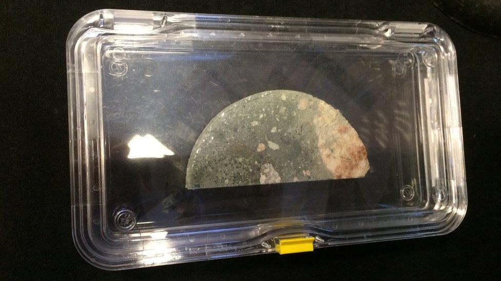 Chicxulub core sample