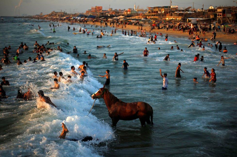 Konj u moru