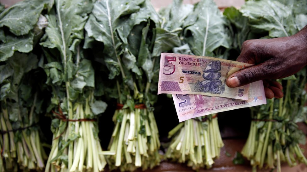 Two Z$5 held over green vegetables