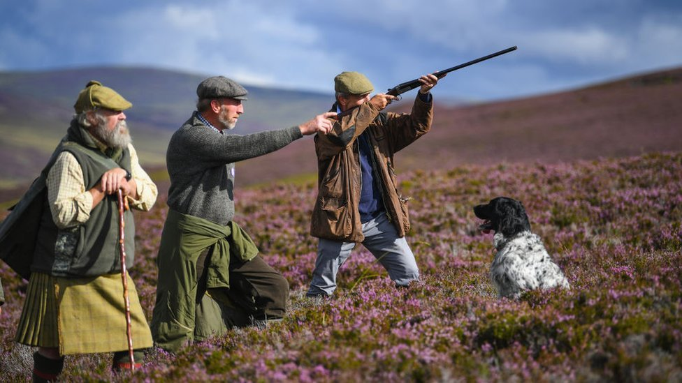 Who owns Scotland? The changing face of Scotland's landowners