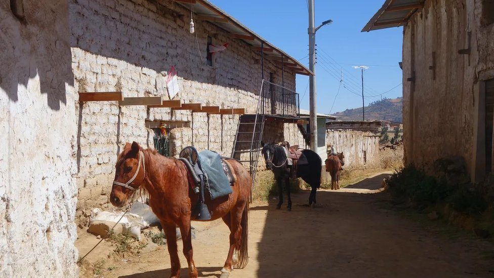 Los caballos listos para viajar en Huamantanga, el pueblo andino donde la gente usa las amunas.
