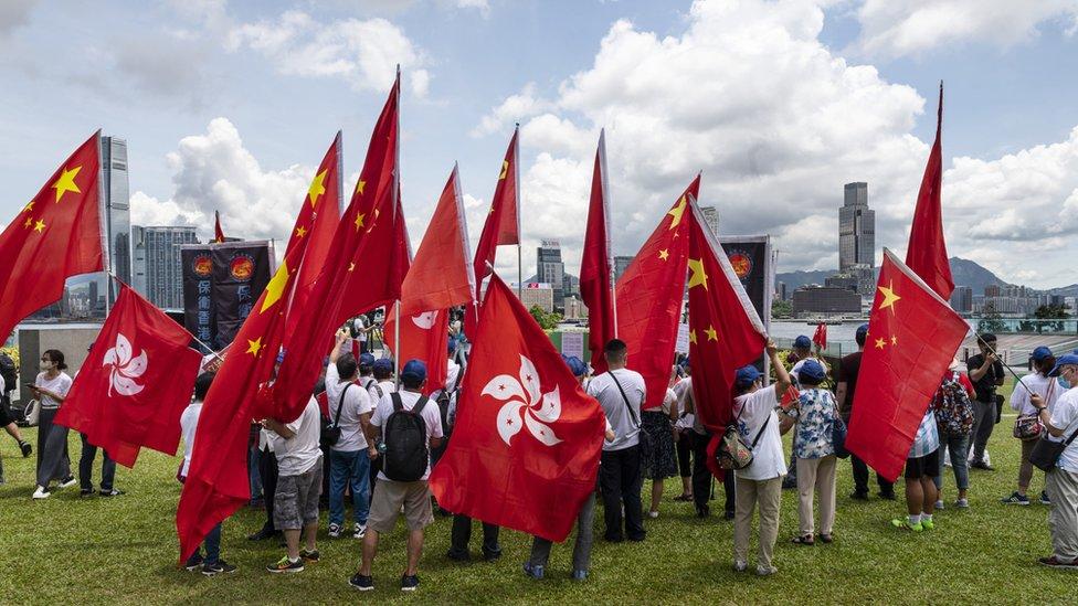 香港親北京團體在政府總部旁添馬公園集會聲援中國頒布《香港國安法》(30/6/2020)