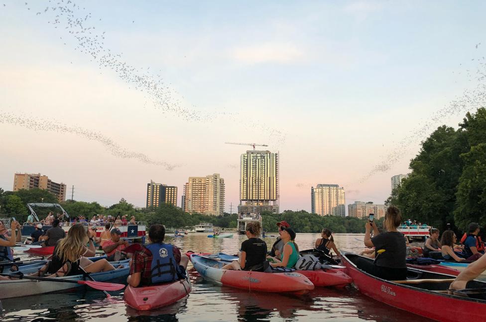 Personas en kayaks observando desde el río nubes de murciélagos volando