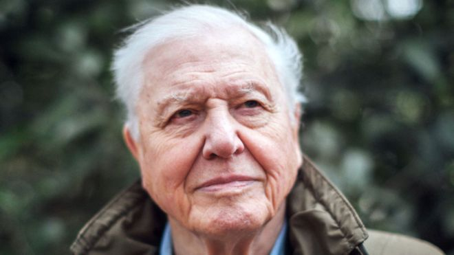 David Attenborough climate change TV show a 'call to arms'