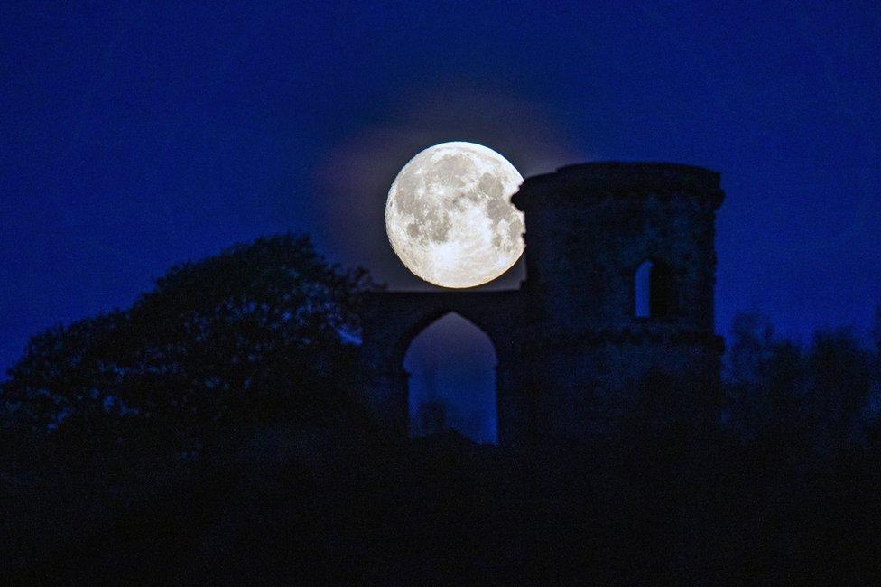 قلعة مو كوب فولي