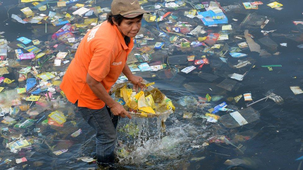 Denizden plastik toplayan bir kadın.