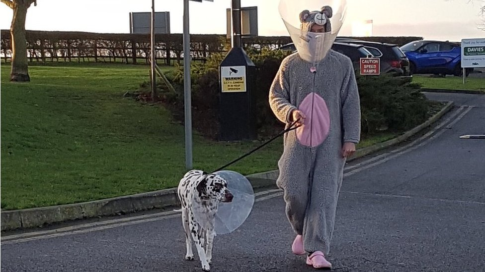 Hitchin vet dresses as giant mouse to calm dog
