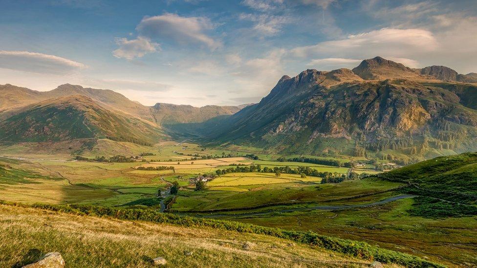 Extra £40m for green spaces in England, Boris Johnson pledges thumbnail