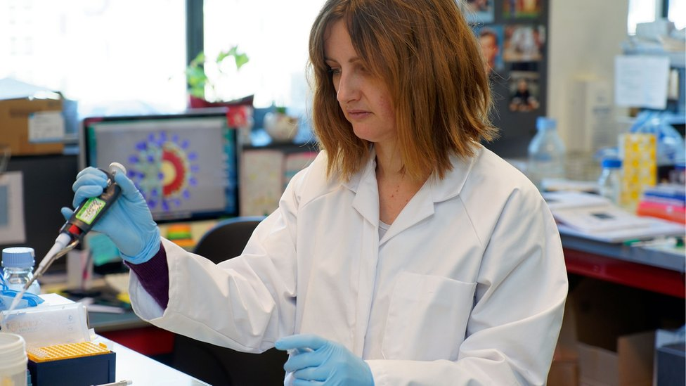 Sandrine Belouzard, virologist and researcher, works in her epidemiology laboratory of the