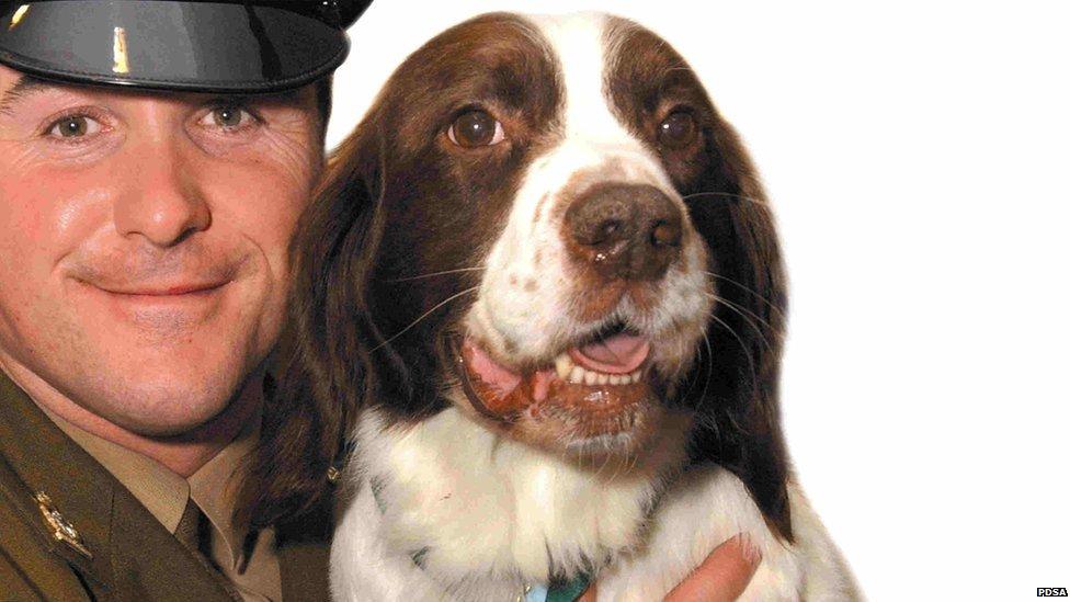 Buster with handler Sergeant Danny Morgan