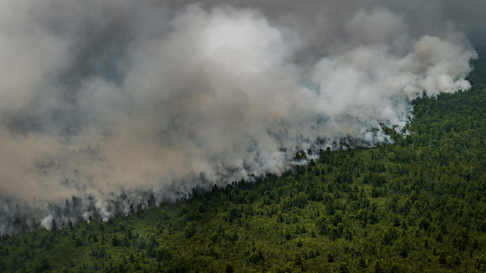 An aerial view of peatland and forest on fire in Indonesia