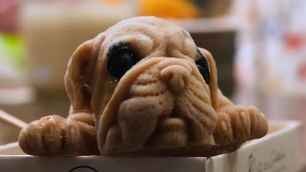 One ice cream puppy, please