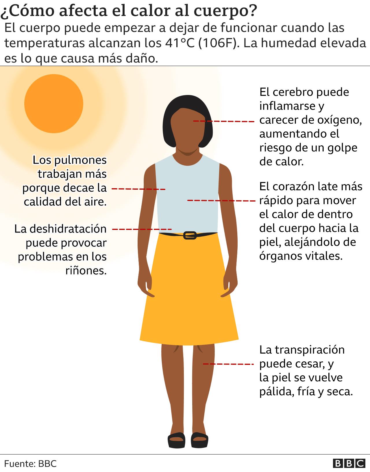 Gráfico sobre el impacto del calor en el cuerpo.