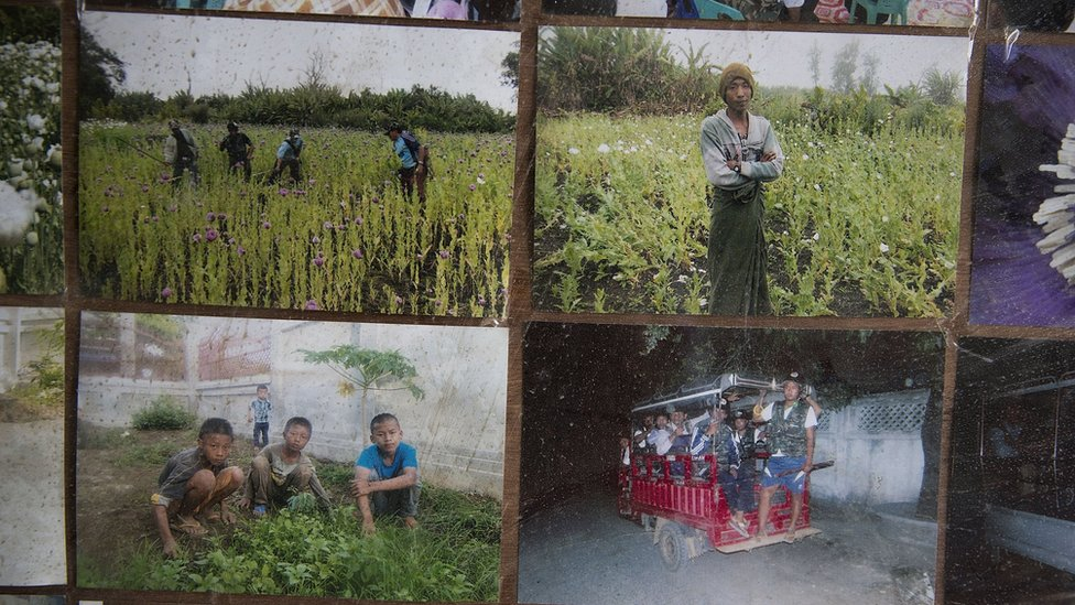 Photos of poppy clearing operations are on display at Pat Jasan headquarters in Myitkyina.