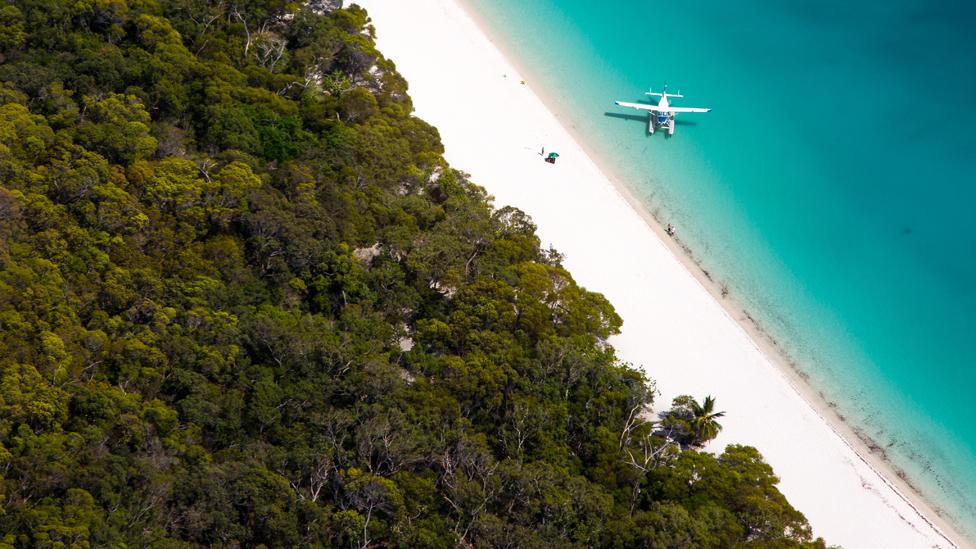 A sea plane beside a tropical beach