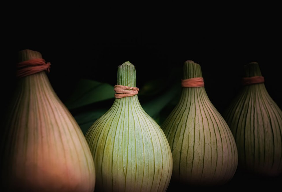 A row of large onions