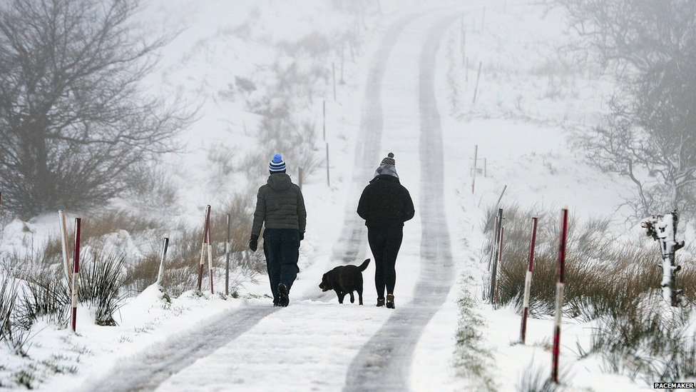 Dog walkers in the snow