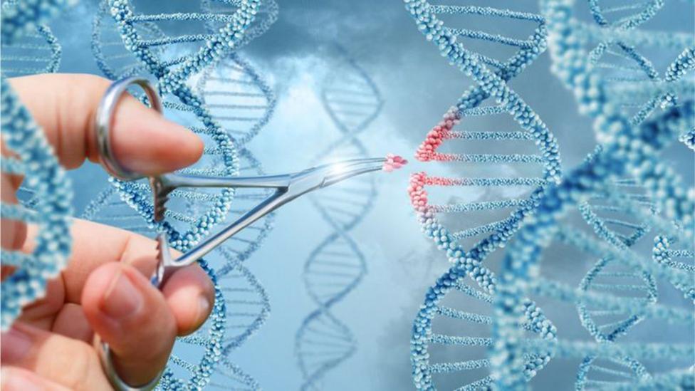Unas tijeras cortado genes