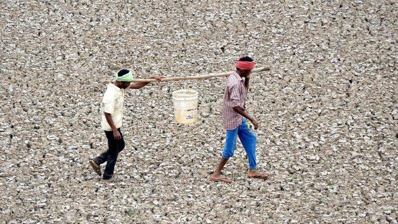 Dua pria membawa sisa air yang mereka ambil dari kolam kecil yang mengering di pinggir kota Chennai, India.