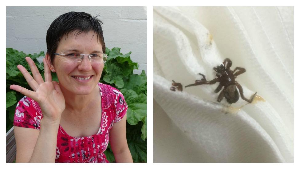 Victoria Price a spider