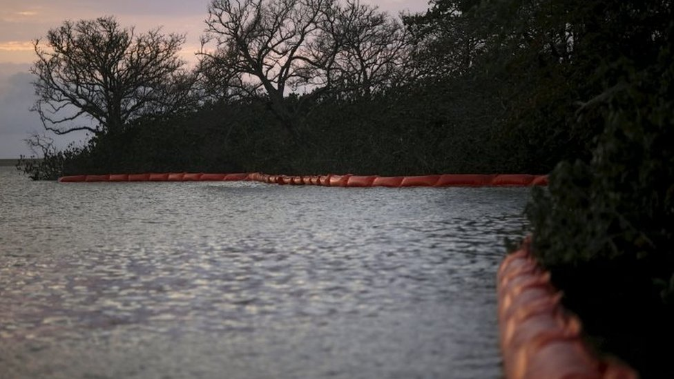 Oil barriers are placed on the mouth of Rio Doce to protect the vegetation of the mud after a dam, owned by Vale SA and BHP Billiton Ltd burst, in Regencia village November 20, 2015.