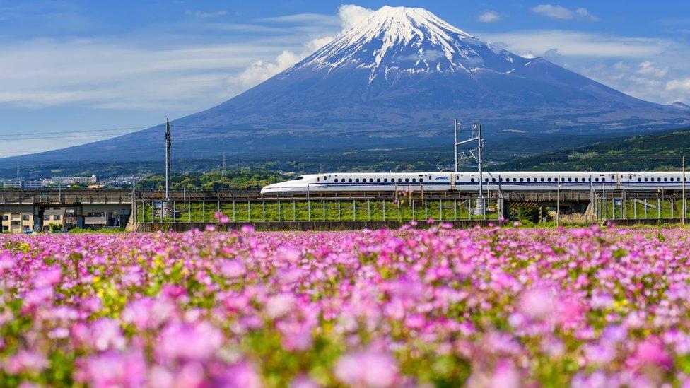 No todos los trenes son iguales. El tren bala Shinkansen pasando frente a la Montaña Fuji.