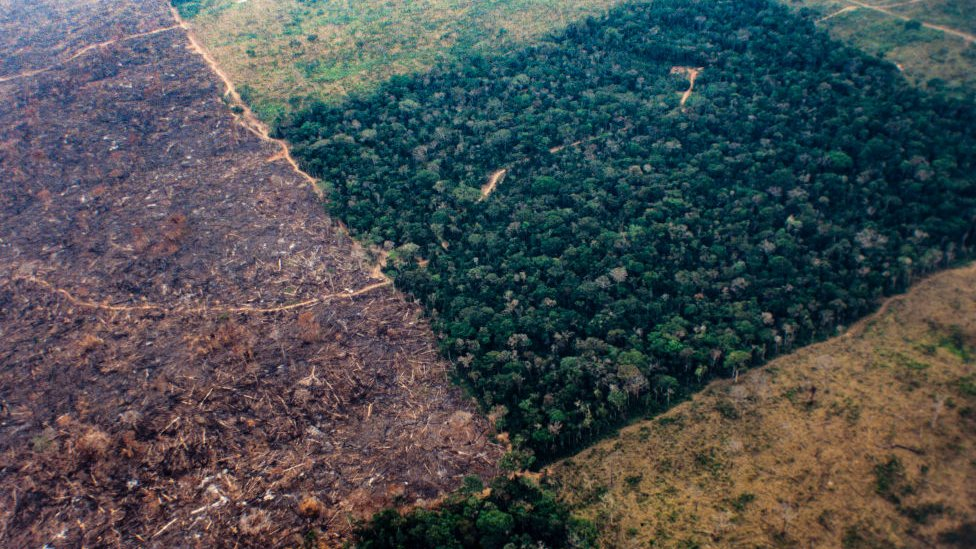 Aerial photo showing rapid deforestation of the Amazon rainforest