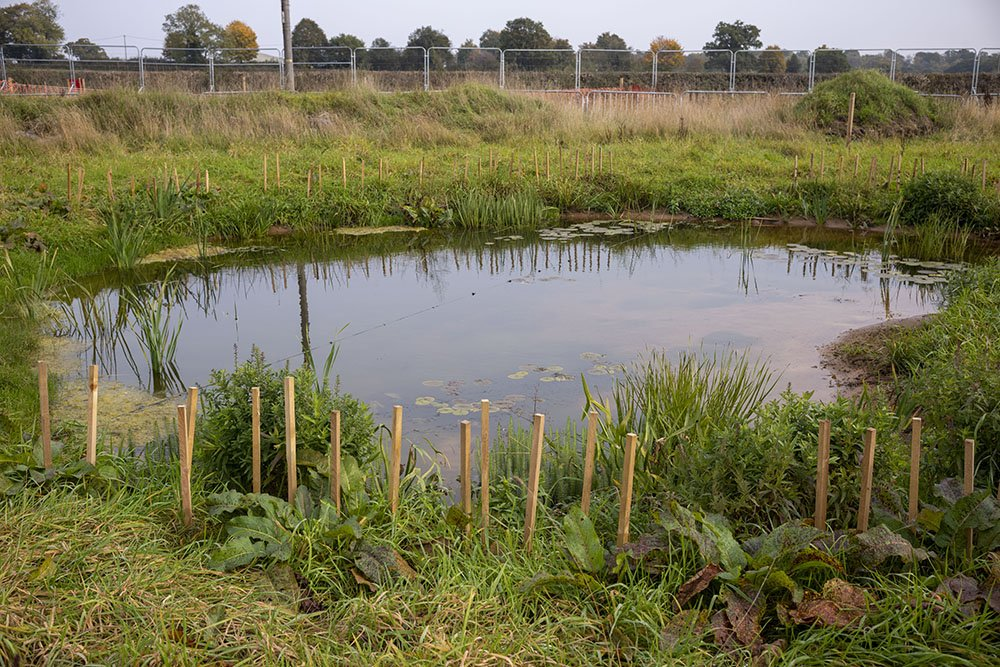 New ponds and banks for wildlife have been created at the site in Broadwells Wood