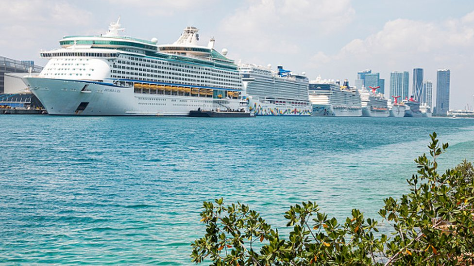 A row of cruise ships docked at a port in Miami