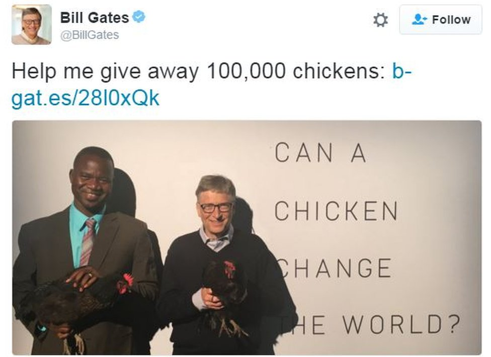 """Screen grab from tweet from Bill Gates which reads: """"Help me give away 100,000 chickens"""""""