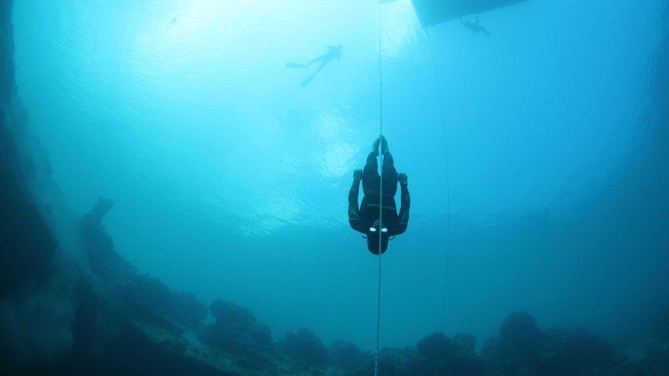 William Trubridge freediver