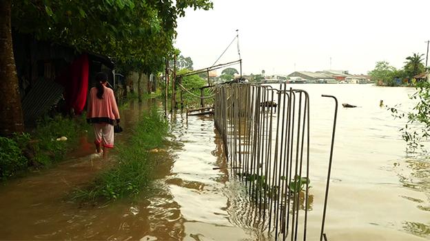Flooded bankside