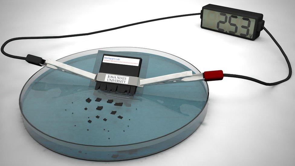 The dissolvable battery