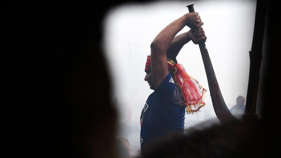 Un devoto hindú sacrifica a un búfalo como ofrenda a Gadhimai, diciembre, 2019