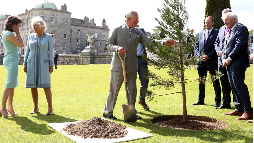Prince Charles planted a tree ahead of a civic reception at the Powerscourt House and Gardens in Enniskerry