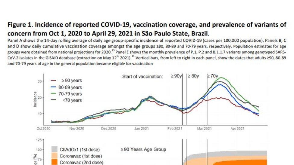 Gráfico de estudo sobre a CoronaVac