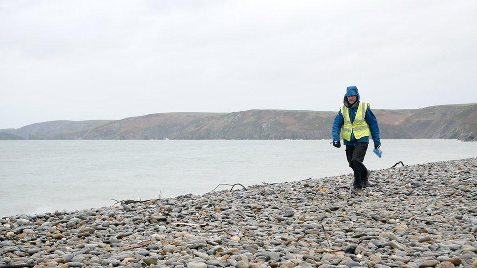 Brian Burnie walking on a shoreline