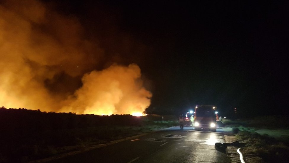 Gorse fire breaks out in 'tinder dry' New Forest