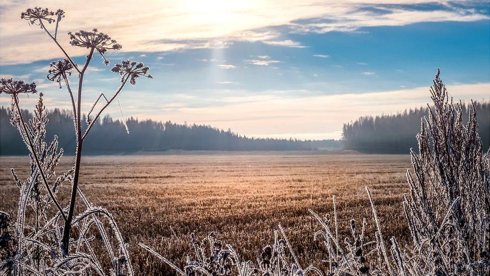 Paisaje de invierno en Finlandia.