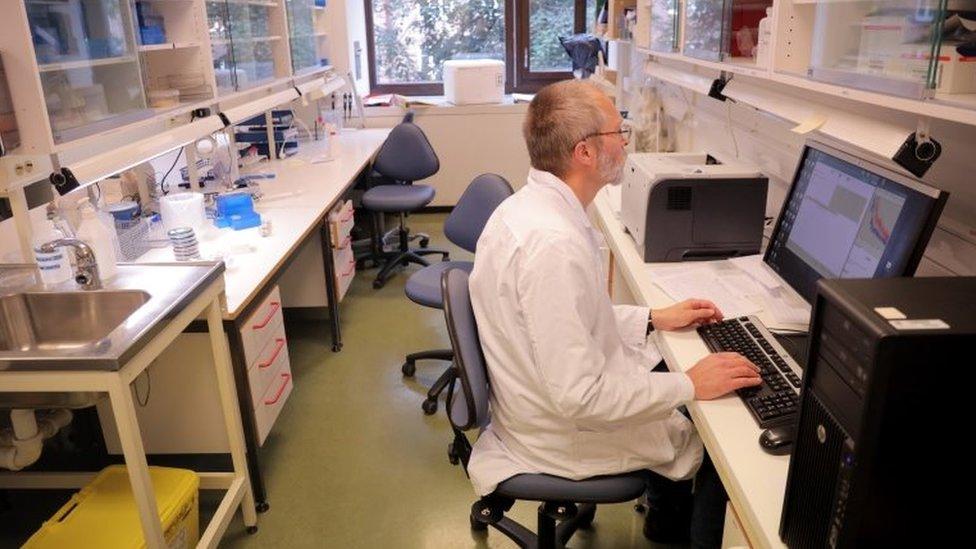 Un científico analiza resultados en una computadora