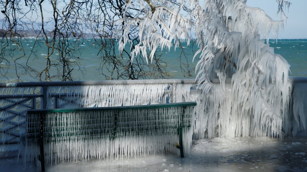 Ice is pictured on a barrier and a tree during a windy winter day near Lake Geneva, Switzerland.