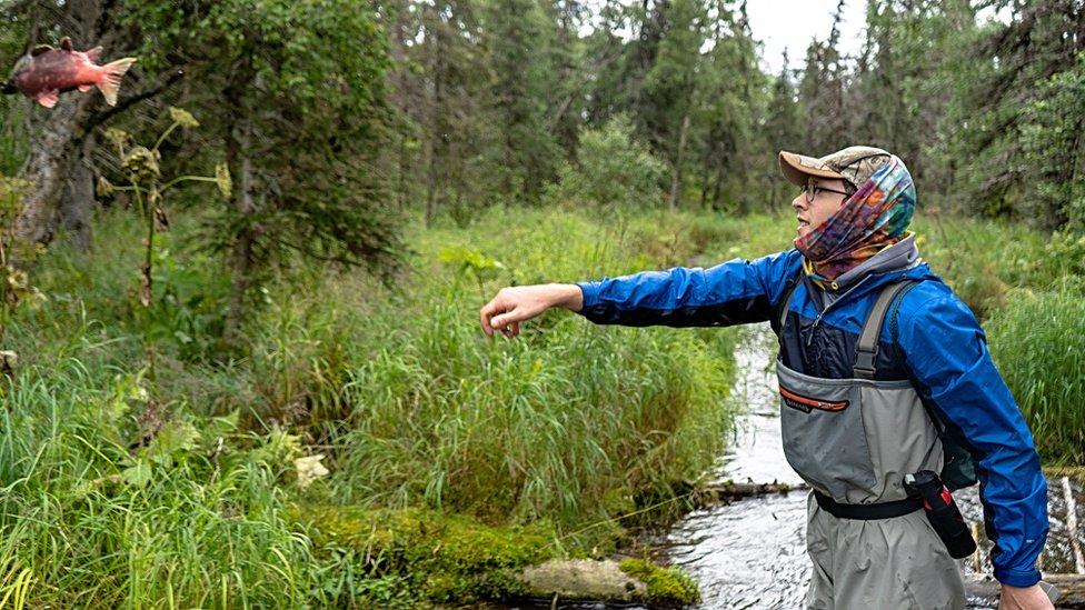 Salmon tossing (Image: Dan Dincola)
