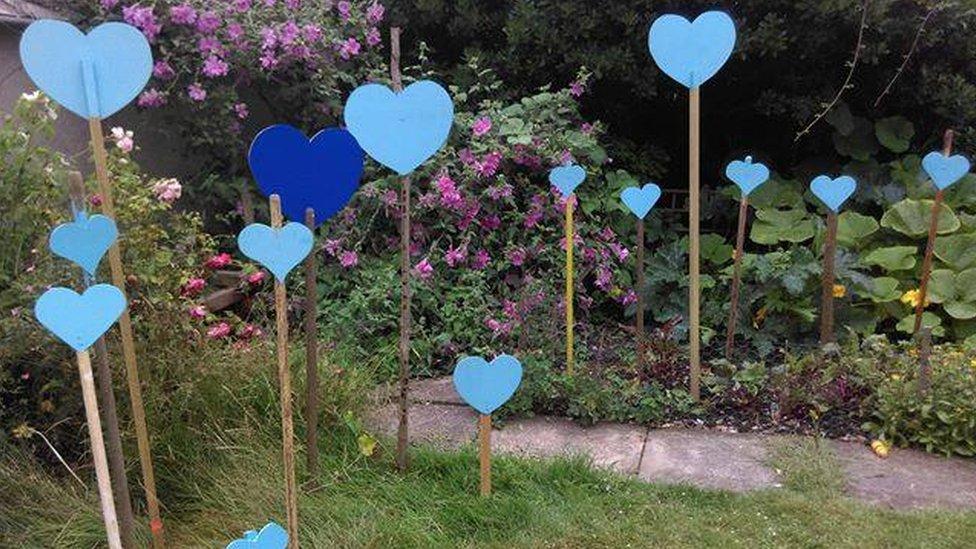 Blue hearts in a garden