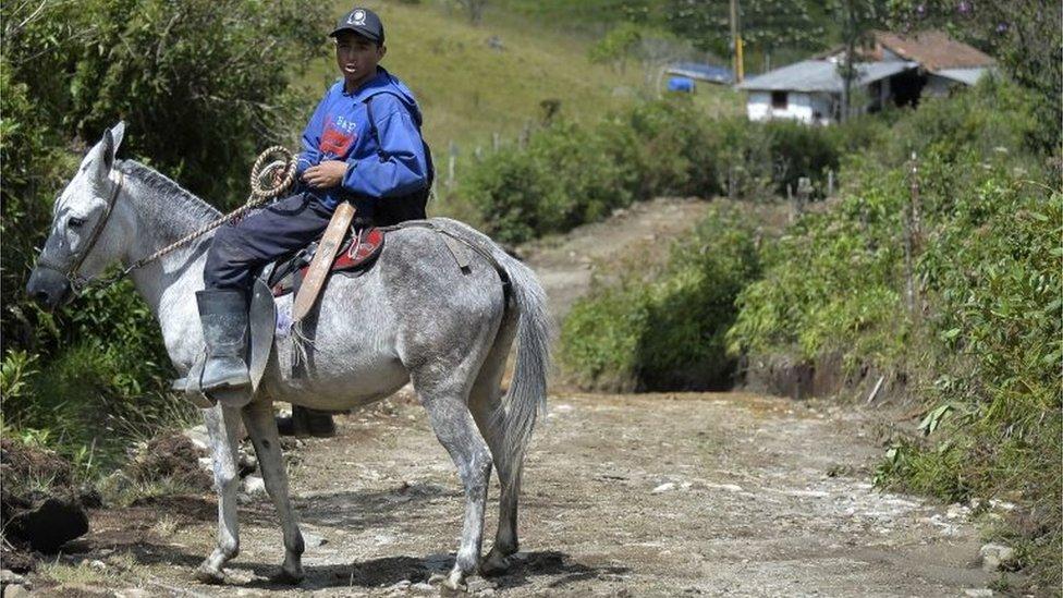 A man rides his horse in La Honda, Carmen de Viboral municipality, Antioquia department, Colombia, on 28 August, 2015