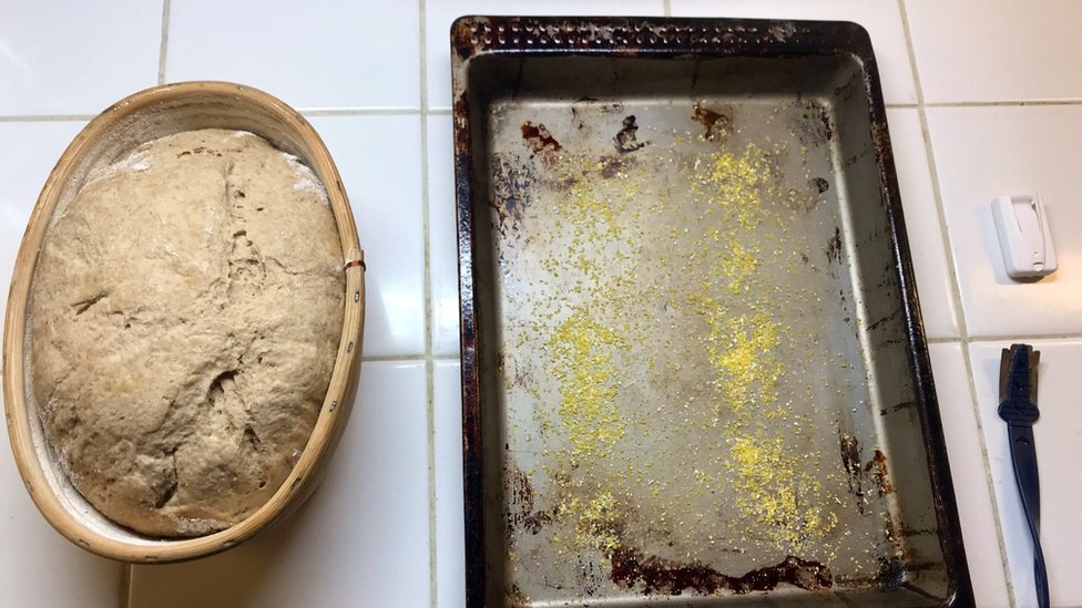 Risen dough made with yeast extracted from ancient Egyptian ceramics